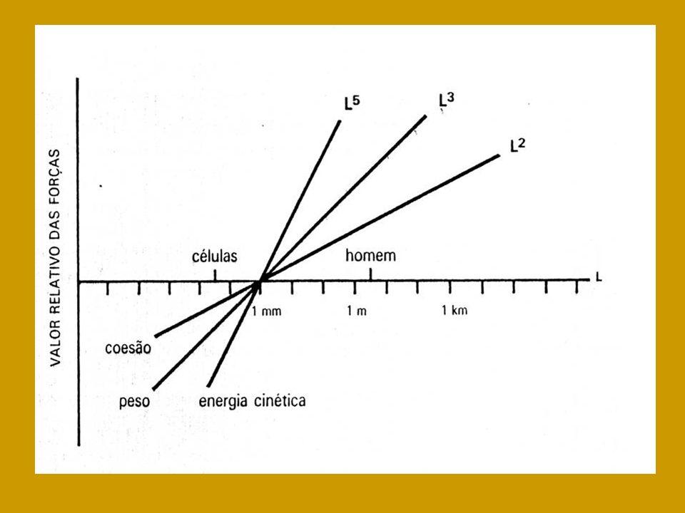 2)Armazenagem de óleos e gorduras=>gravidade específica de cerca 0,9; 3)Câmaras de ar ou de outros gases=>diminuição da densidade específica: ar e gases em conchas pesadas;