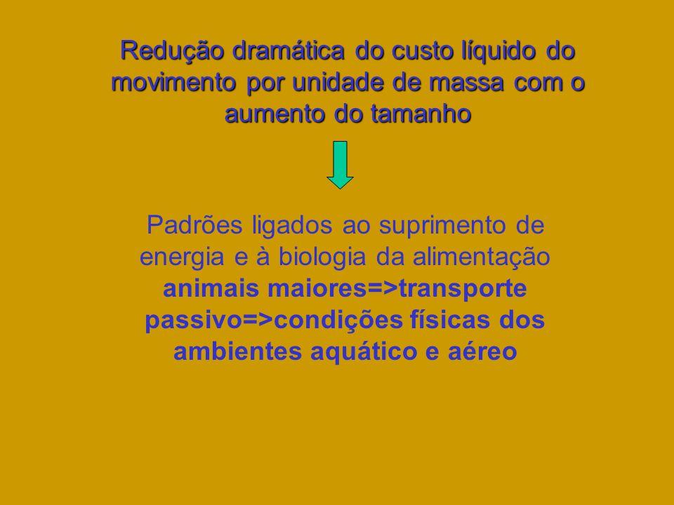 Redução dramática do custo líquido do movimento por unidade de massa com o aumento do tamanho Padrões ligados ao suprimento de energia e à biologia da