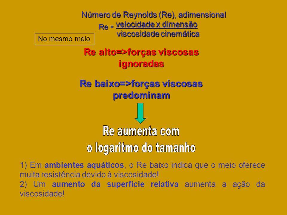 Número de Reynolds (Re), adimensional Número de Reynolds (Re), adimensional Re = velocidade x dimensão viscosidade cinemática viscosidade cinemática R