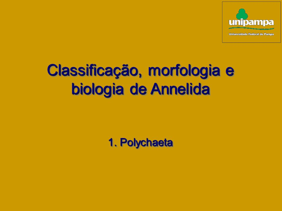 Classificação, morfologia e biologia de Annelida Classificação, morfologia e biologia de Annelida 1. Polychaeta