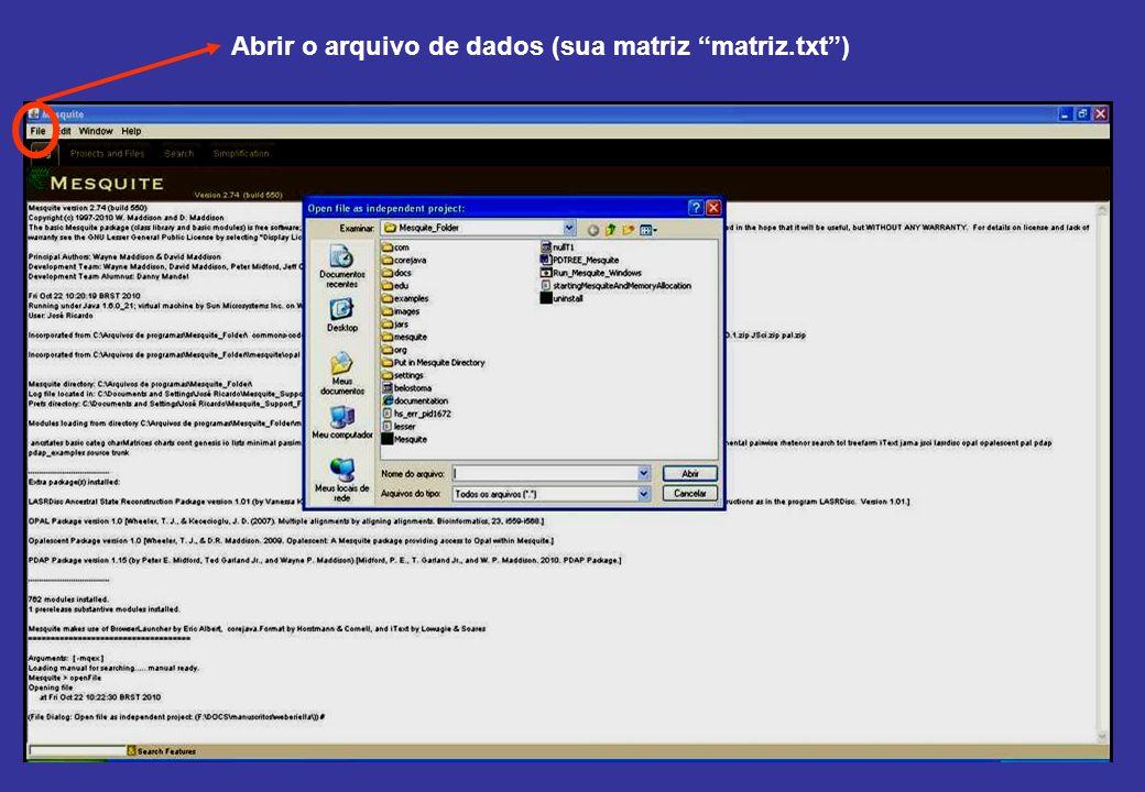 Abrir o arquivo de dados (sua matriz matriz.txt)