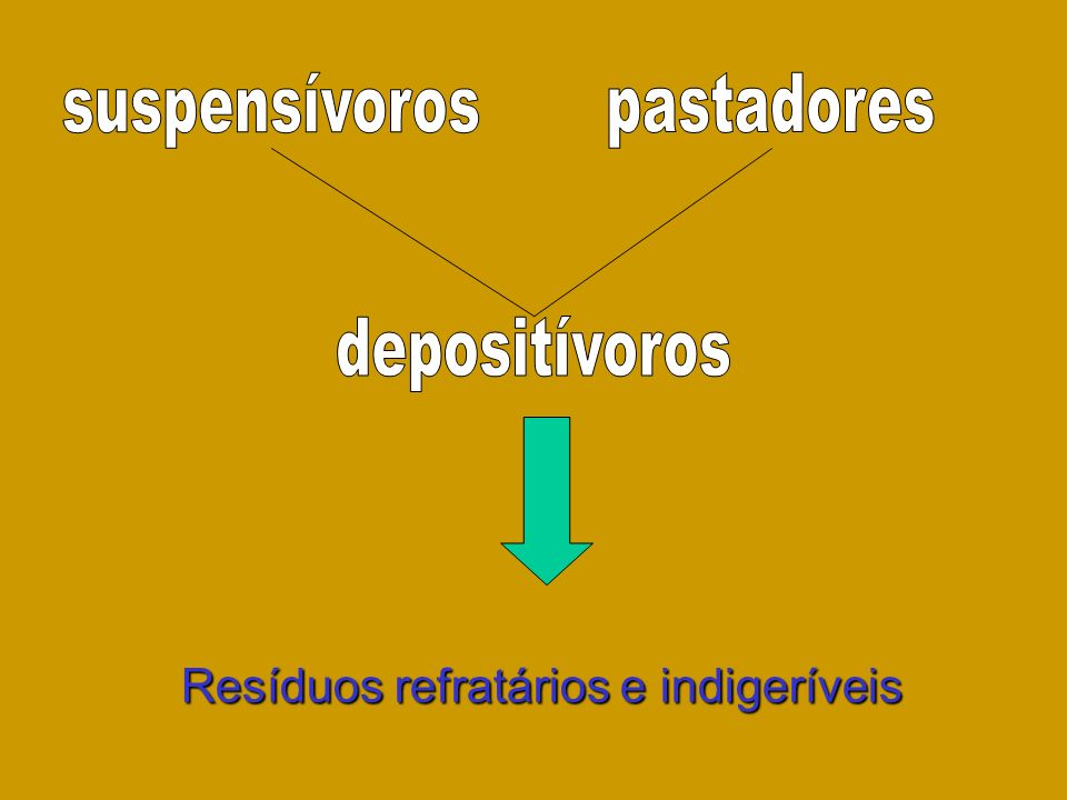 Resíduos refratários e indigeríveis