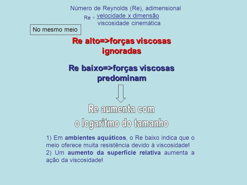 Número de Reynolds (Re), adimensional Re = velocidade x dimensão viscosidade cinemática Re alto=>forças viscosas ignoradas Re baixo=>forças viscosas p