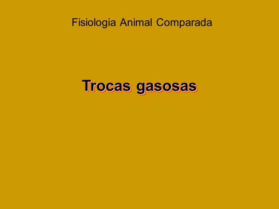Fisiologia Animal Comparada Trocas gasosas