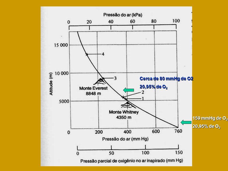 159 mmHg de O 2 20,95% de O 2 Cerca de 80 mmHg de O2 20,95% de O 2