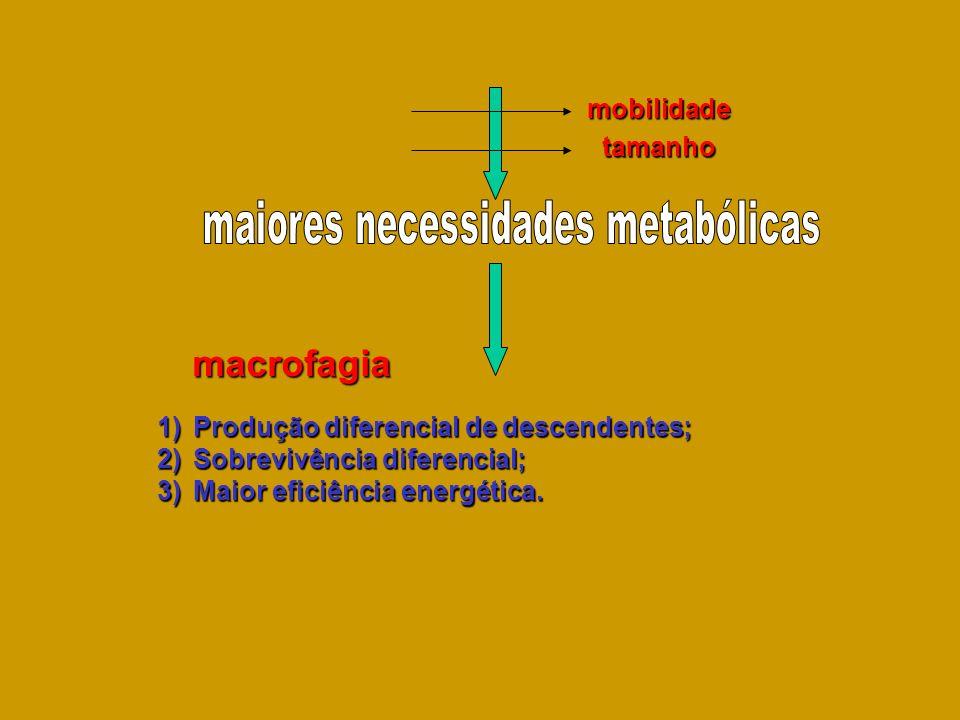mobilidade tamanho 1)Produção diferencial de descendentes; 2)Sobrevivência diferencial; 3)Maior eficiência energética. macrofagia