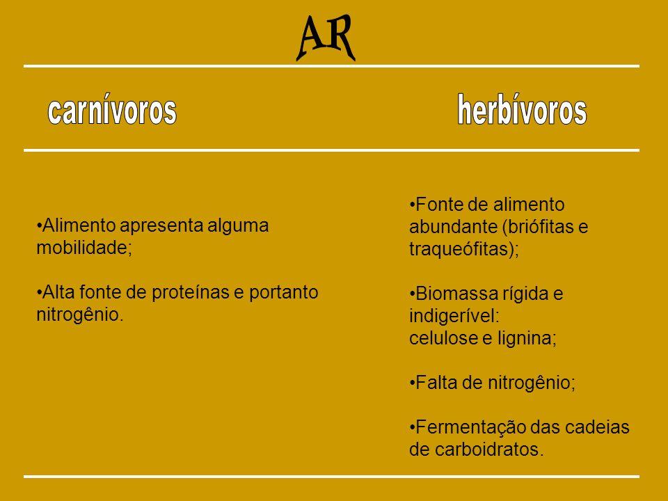 Alimento apresenta alguma mobilidade; Alta fonte de proteínas e portanto nitrogênio. Fonte de alimento abundante (briófitas e traqueófitas); Biomassa