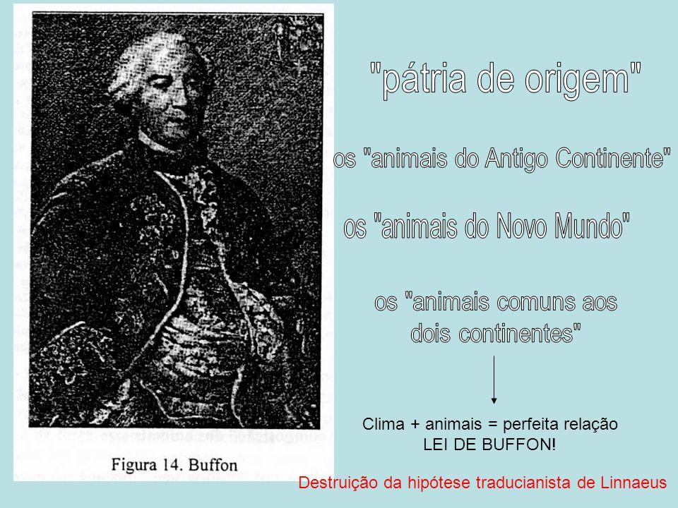 Clima + animais = perfeita relação LEI DE BUFFON! Destruição da hipótese traducianista de Linnaeus