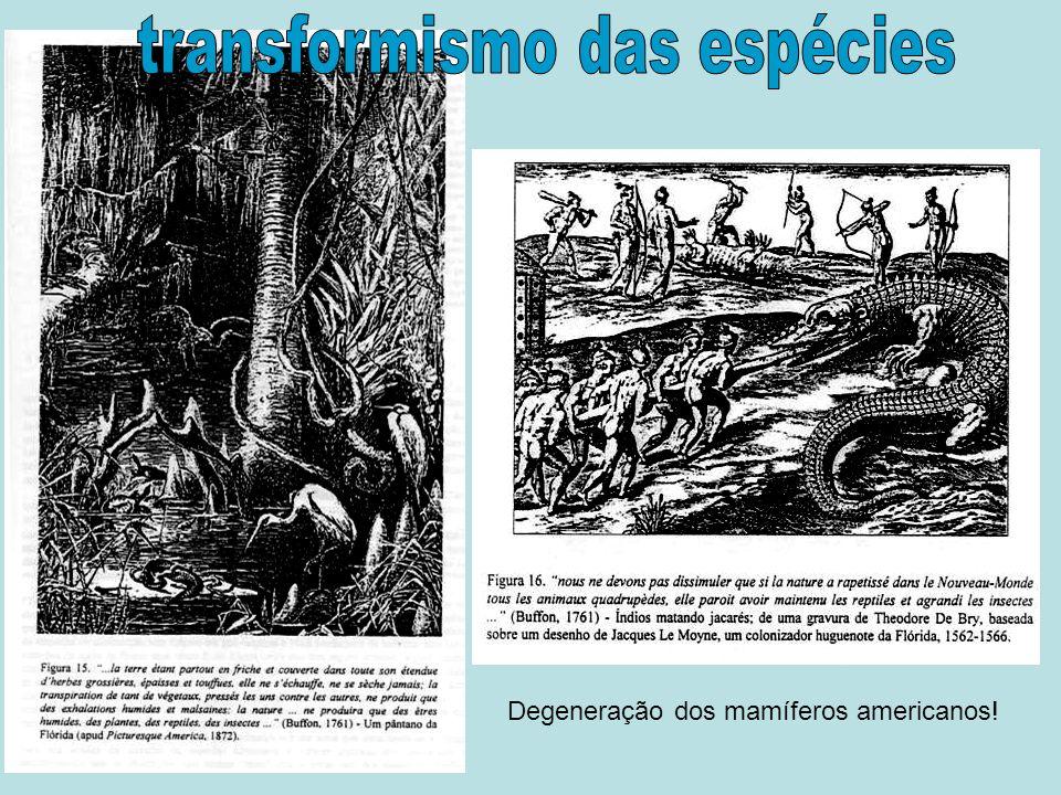 Degeneração dos mamíferos americanos!