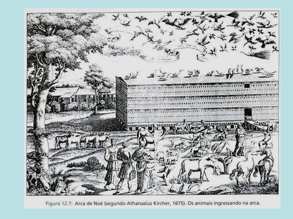 Noé não levou plantas dentro da arca (a não ser para alimentação) = GERAÇÃO ESPONTÂNEA???); Noé não levou peixes na arca, afinal são animais aquáticos!!.