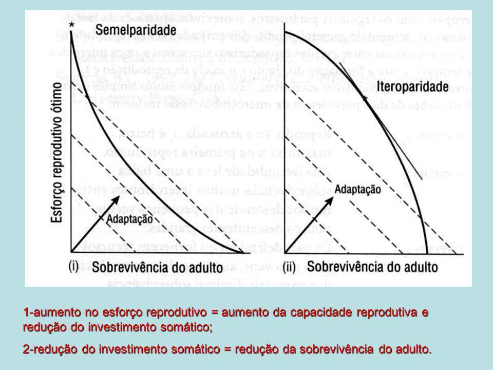 Investimento parental número de indivíduos nascidos Cuidado parental FÊMEAMACHO Sucesso reprodutivo