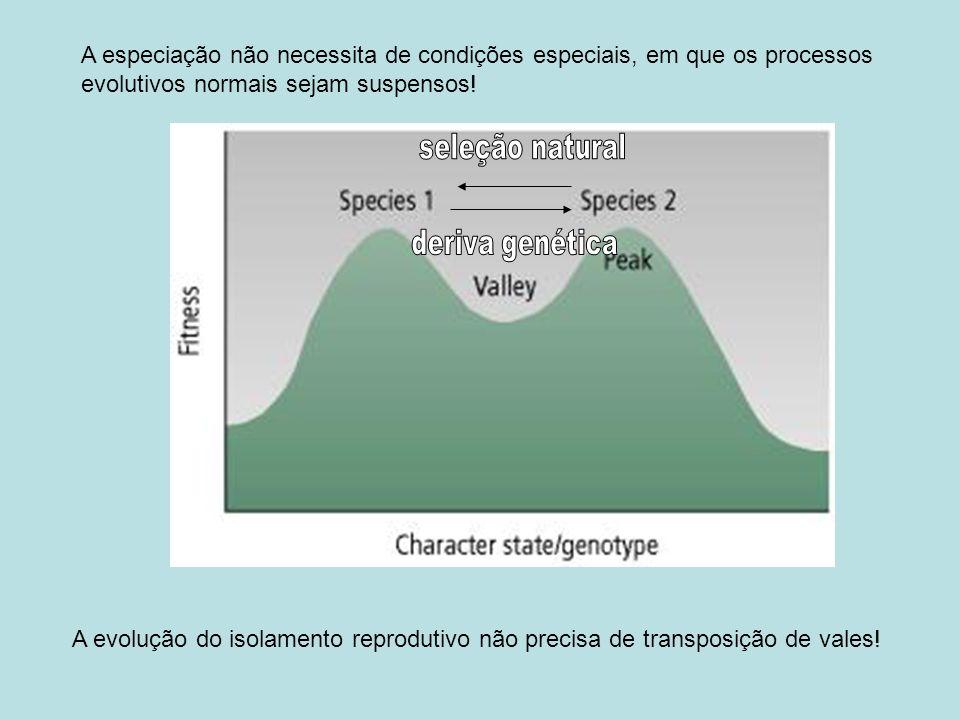 População 1 / ambiente 1 População 2 / ambiente 2 a tem W alto b tem W alto Estéril ou inviável Isolamento pós-zigótico causado por interação de múltiplos locos