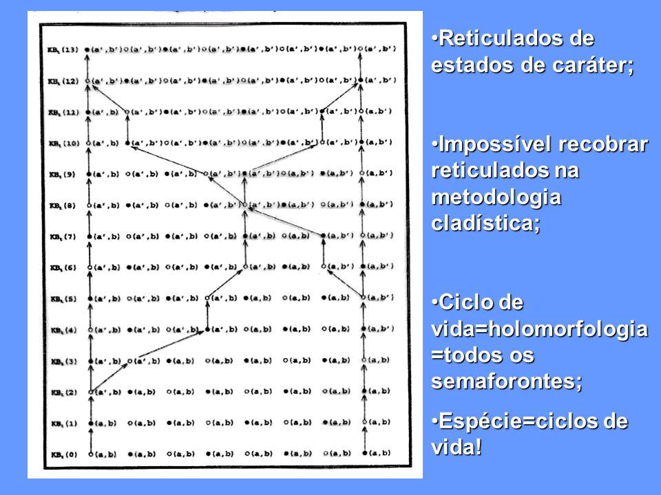Reticulados de estados de caráter;Reticulados de estados de caráter; Impossível recobrar reticulados na metodologia cladística;Impossível recobrar reticulados na metodologia cladística; Ciclo de vida=holomorfologia =todos os semaforontes;Ciclo de vida=holomorfologia =todos os semaforontes; Espécie=ciclos de vida!Espécie=ciclos de vida!