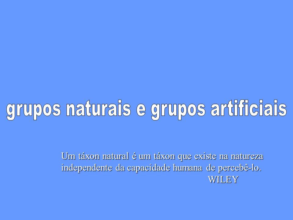 Um táxon natural é um táxon que existe na natureza independente da capacidade humana de percebê-lo.