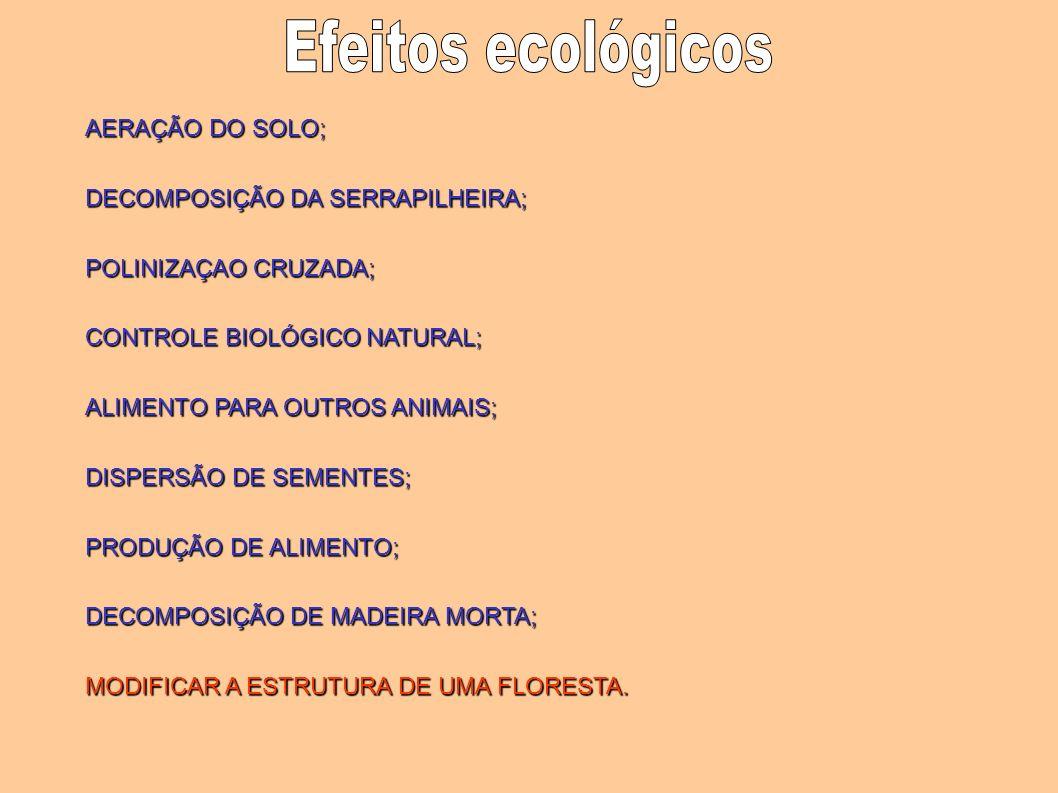 AERAÇÃO DO SOLO; DECOMPOSIÇÃO DA SERRAPILHEIRA; POLINIZAÇAO CRUZADA; CONTROLE BIOLÓGICO NATURAL; ALIMENTO PARA OUTROS ANIMAIS; DISPERSÃO DE SEMENTES;