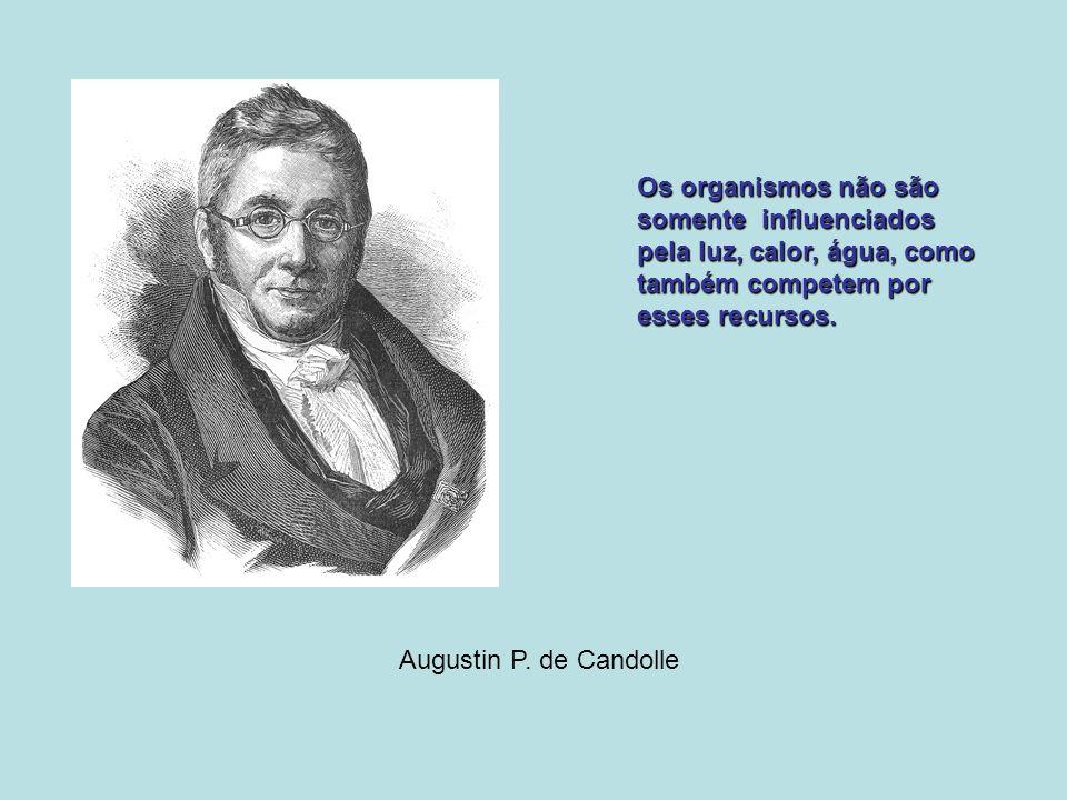 Augustin P. de Candolle Os organismos não são somente influenciados pela luz, calor, água, como também competem por esses recursos.