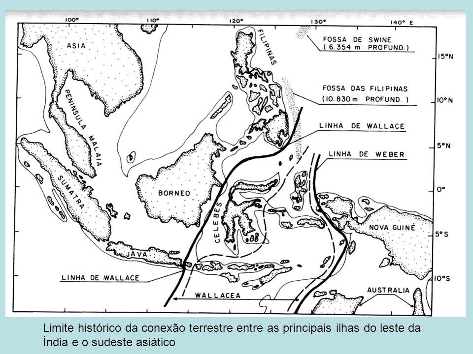 Limite histórico da conexão terrestre entre as principais ilhas do leste da Índia e o sudeste asiático