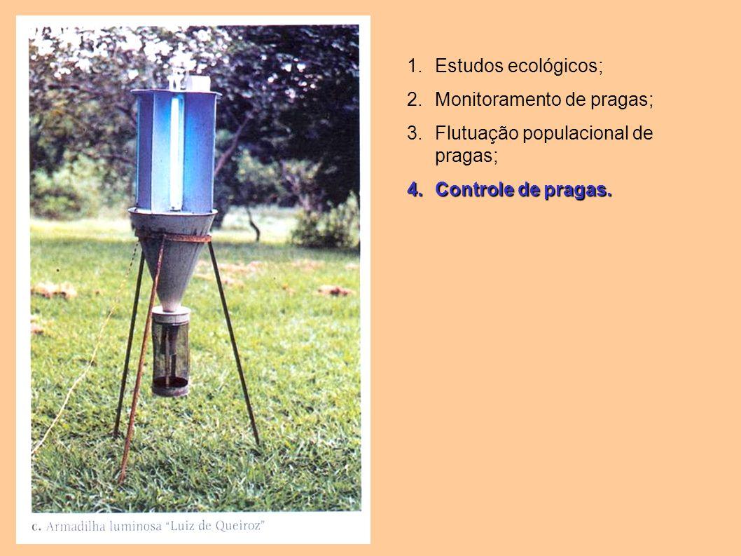1.Estudos ecológicos; 2.Monitoramento de pragas; 3.Flutuação populacional de pragas; 4.Controle de pragas.