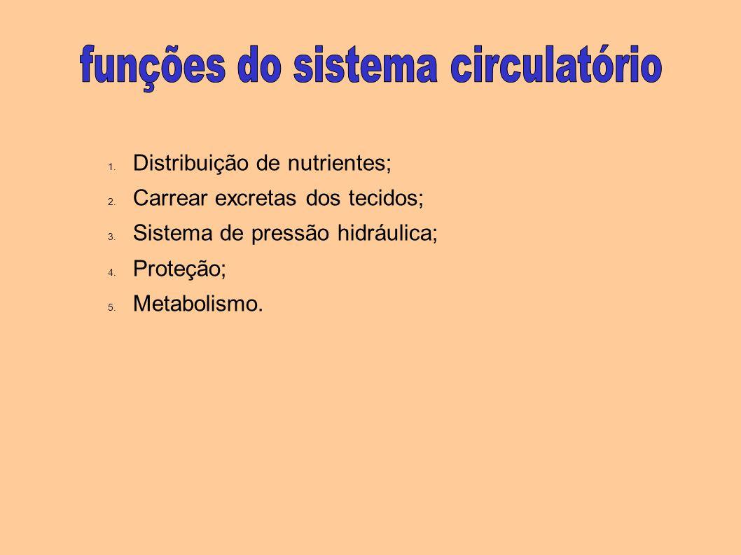 1. Distribuição de nutrientes; 2. Carrear excretas dos tecidos; 3. Sistema de pressão hidráulica; 4. Proteção; 5. Metabolismo.
