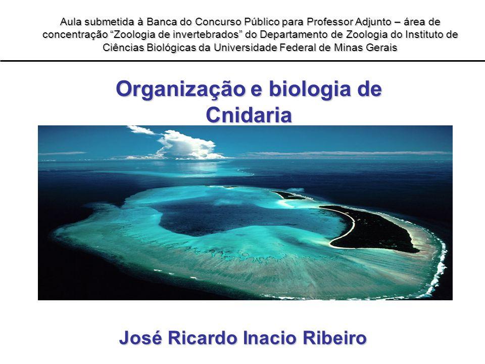 Organização e biologia de Cnidaria Aula submetida à Banca do Concurso Público para Professor Adjunto – área de concentração Zoologia de invertebrados