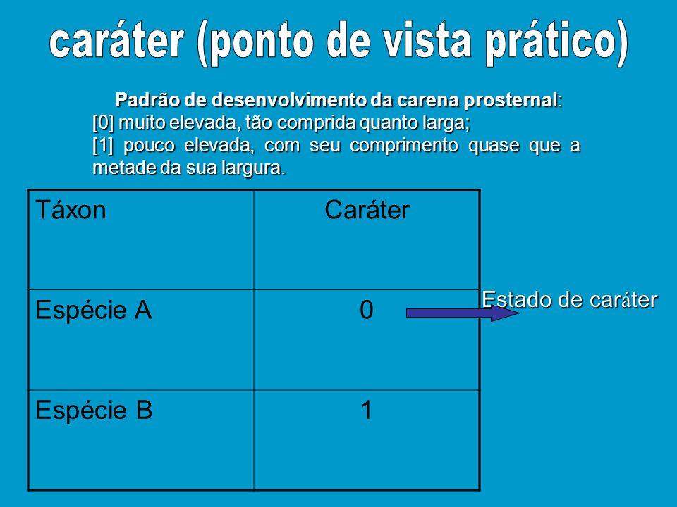 Padrão de desenvolvimento da carena prosternal: Padrão de desenvolvimento da carena prosternal: [0] muito elevada, tão comprida quanto larga; [1] pouc