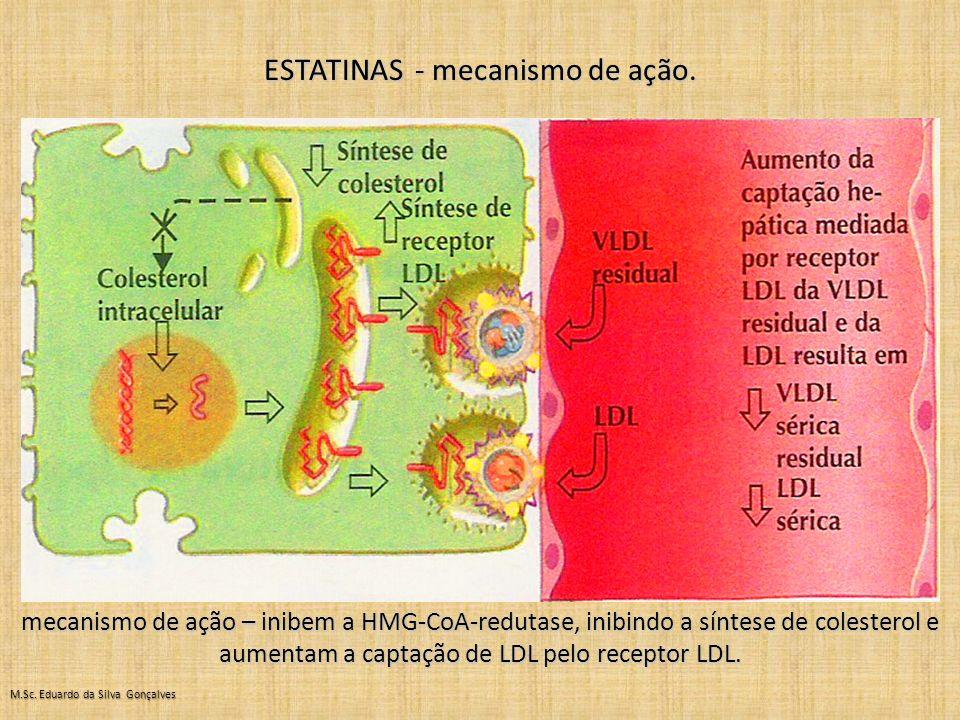 ESTATINAS - mecanismo de ação.