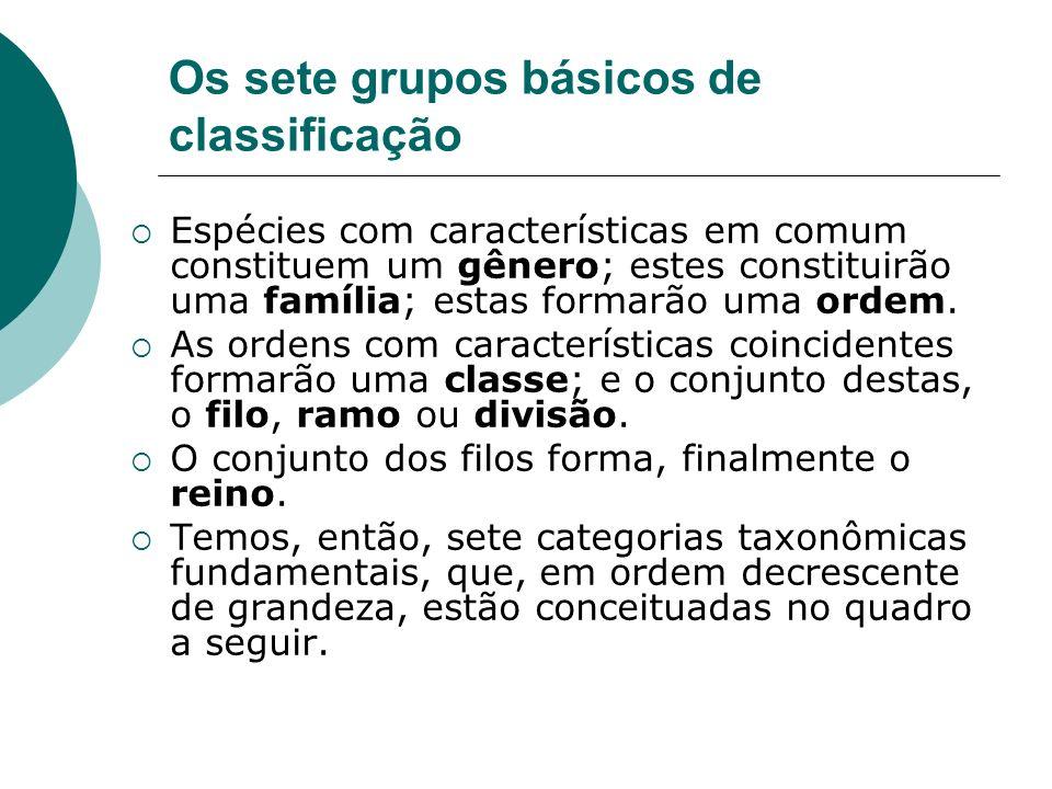 Os sete grupos básicos de classificação Espécies com características em comum constituem um gênero; estes constituirão uma família; estas formarão uma ordem.