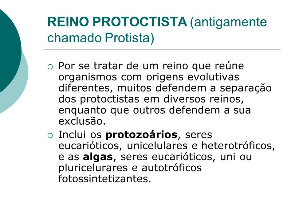 REINO PROTOCTISTA (antigamente chamado Protista) Por se tratar de um reino que reúne organismos com origens evolutivas diferentes, muitos defendem a separação dos protoctistas em diversos reinos, enquanto que outros defendem a sua exclusão.
