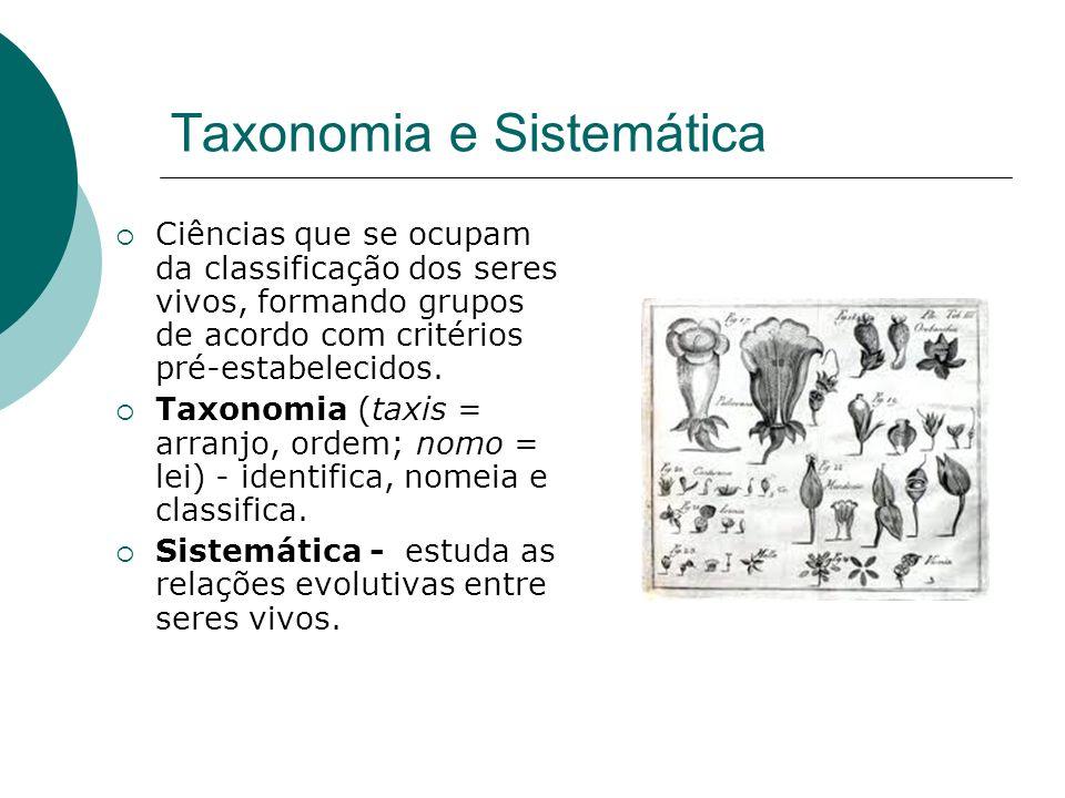 Taxonomia e Sistemática Ciências que se ocupam da classificação dos seres vivos, formando grupos de acordo com critérios pré-estabelecidos.