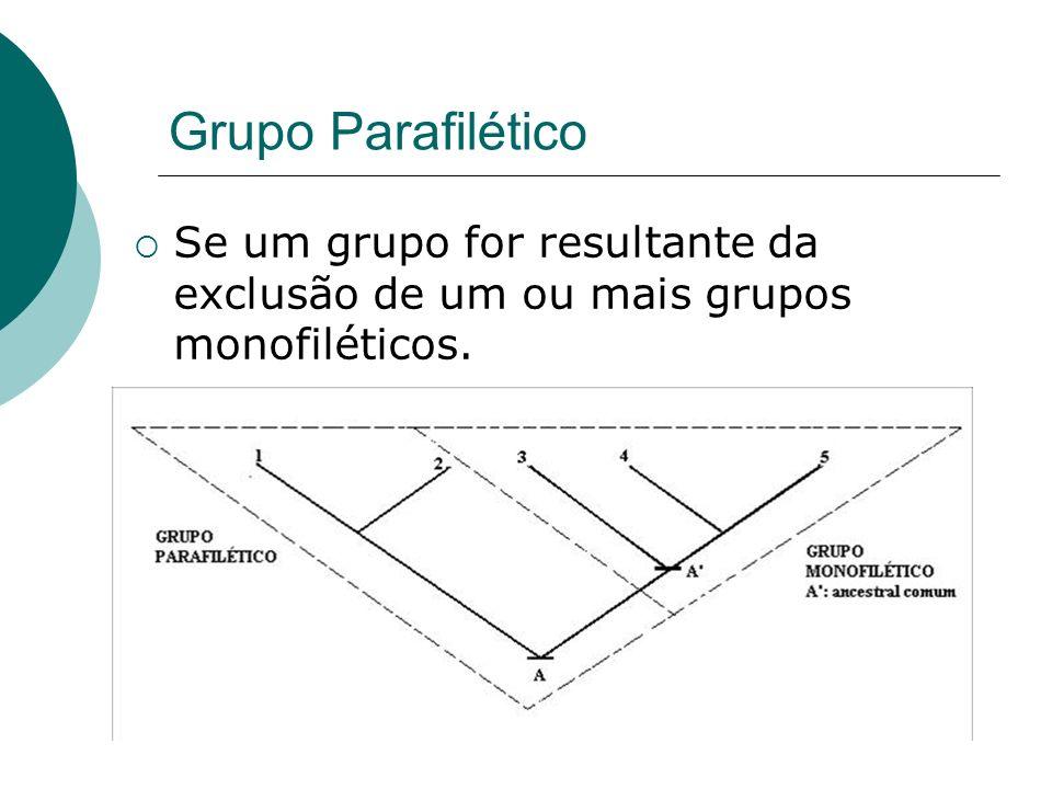 Grupo Parafilético Se um grupo for resultante da exclusão de um ou mais grupos monofiléticos.