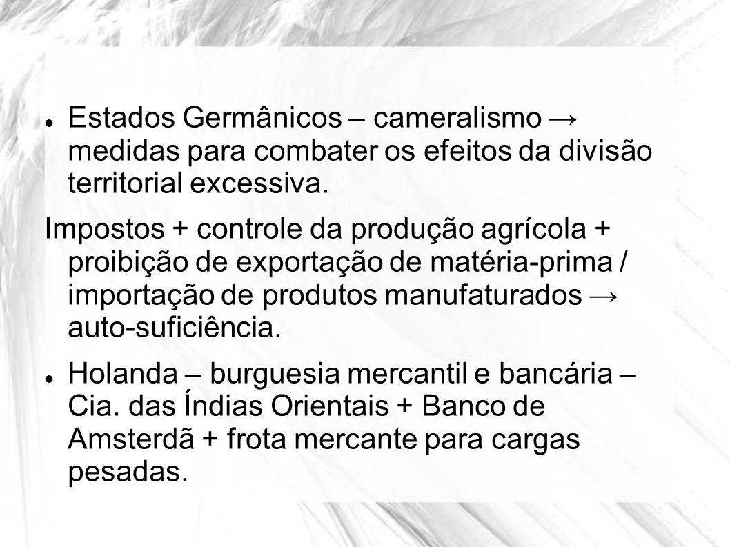 Estados Germânicos – cameralismo medidas para combater os efeitos da divisão territorial excessiva. Impostos + controle da produção agrícola + proibiç