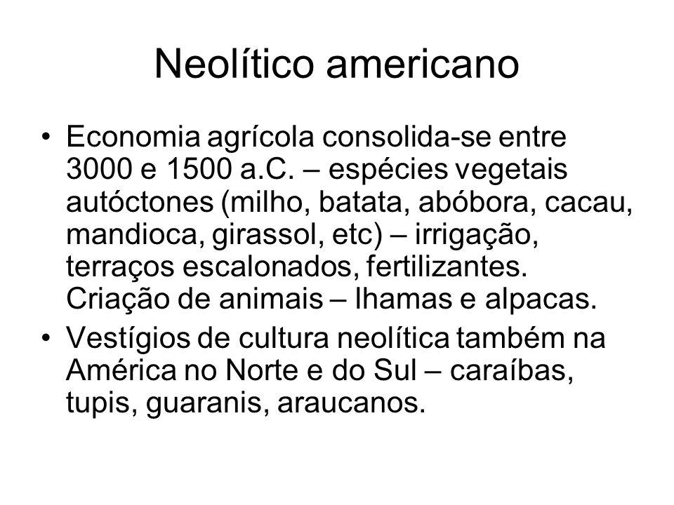 Neolítico americano Economia agrícola consolida-se entre 3000 e 1500 a.C. – espécies vegetais autóctones (milho, batata, abóbora, cacau, mandioca, gir
