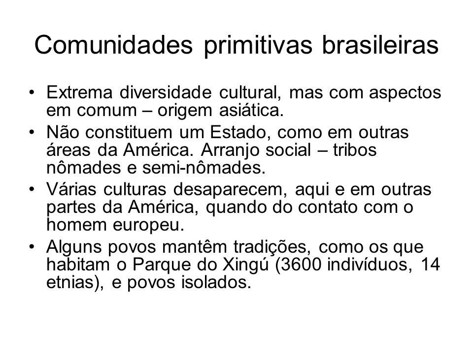 Comunidades primitivas brasileiras Extrema diversidade cultural, mas com aspectos em comum – origem asiática. Não constituem um Estado, como em outras