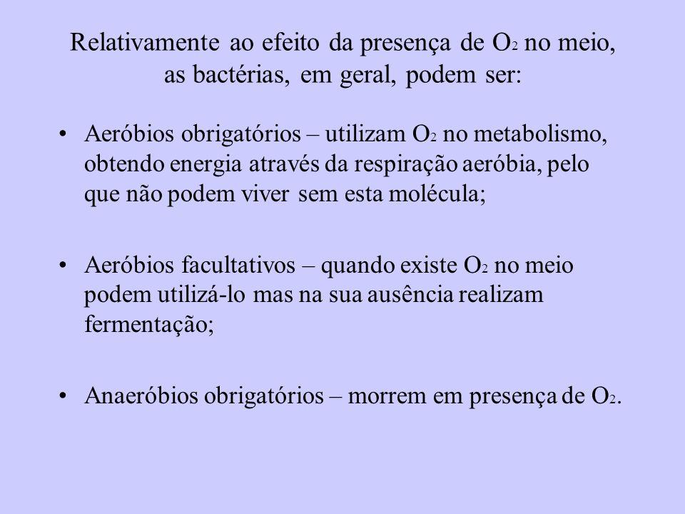 Relativamente ao efeito da presença de O 2 no meio, as bactérias, em geral, podem ser: Aeróbios obrigatórios – utilizam O 2 no metabolismo, obtendo energia através da respiração aeróbia, pelo que não podem viver sem esta molécula; Aeróbios facultativos – quando existe O 2 no meio podem utilizá-lo mas na sua ausência realizam fermentação; Anaeróbios obrigatórios – morrem em presença de O 2.