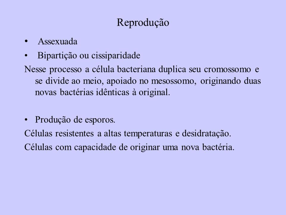 Reprodução Assexuada Bipartição ou cissiparidade Nesse processo a célula bacteriana duplica seu cromossomo e se divide ao meio, apoiado no mesossomo, originando duas novas bactérias idênticas à original.