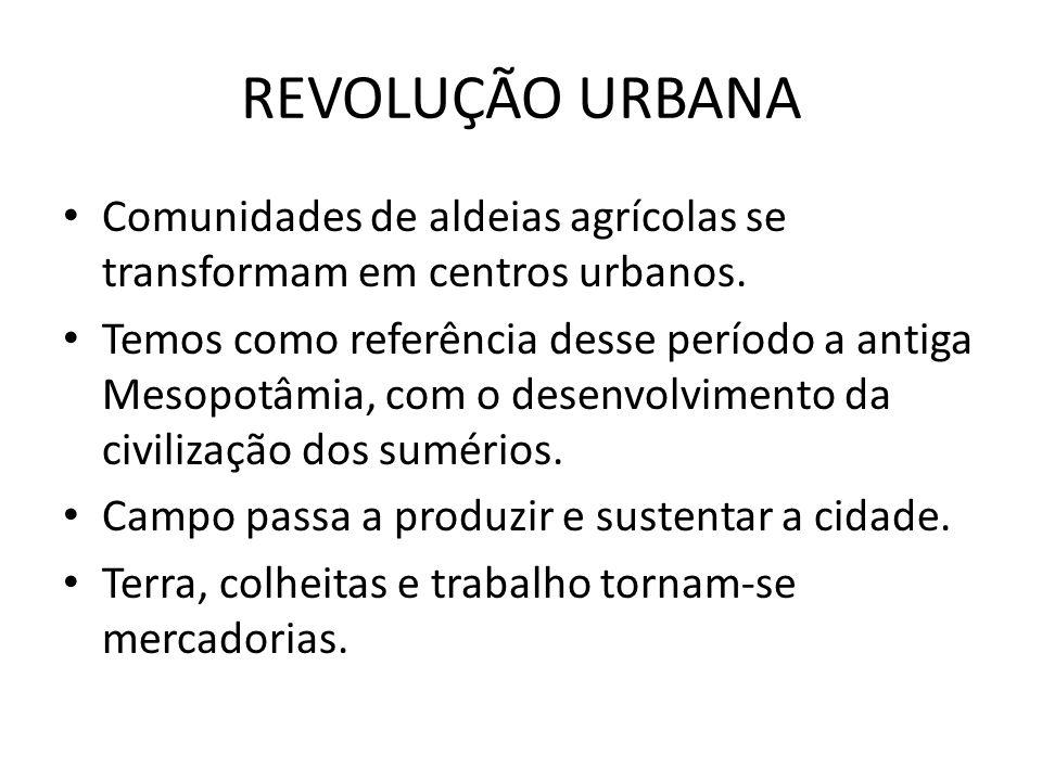 REVOLUÇÃO URBANA Comunidades de aldeias agrícolas se transformam em centros urbanos. Temos como referência desse período a antiga Mesopotâmia, com o d