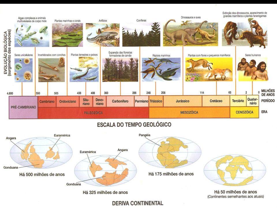 Eras Geológicas PeríodoEventos Cenozóico Dobramentos Modernos Alpes, Andes,etc Mesozóico Abertura do Atlântico Derrames basálticos Paleozóico Formação
