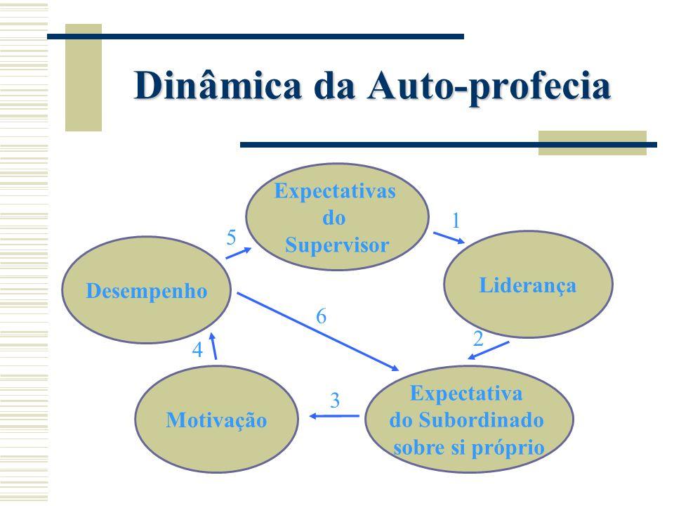 Desempenho Expectativas do Supervisor Liderança Motivação Expectativa do Subordinado sobre si próprio 1 2 3 4 5 6 Dinâmica da Auto-profecia