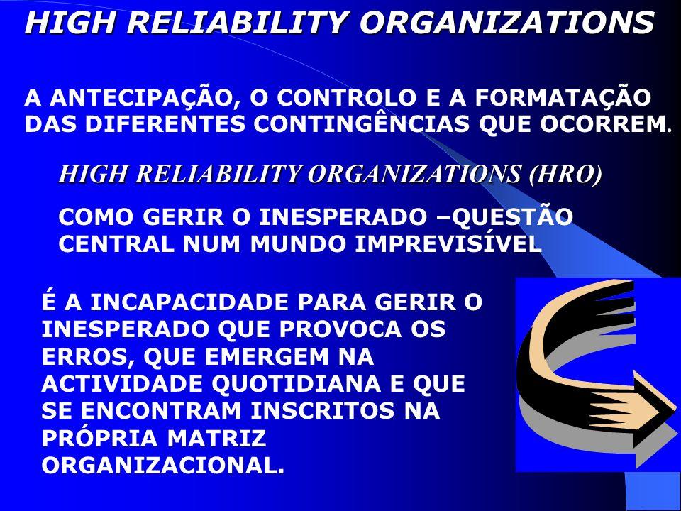 Modelo de Comportamento de Resolução de Problemas de Primeira e Segunda Ordens Normas de Vigilância Individual Preocupações com a Eficiência Empowerme