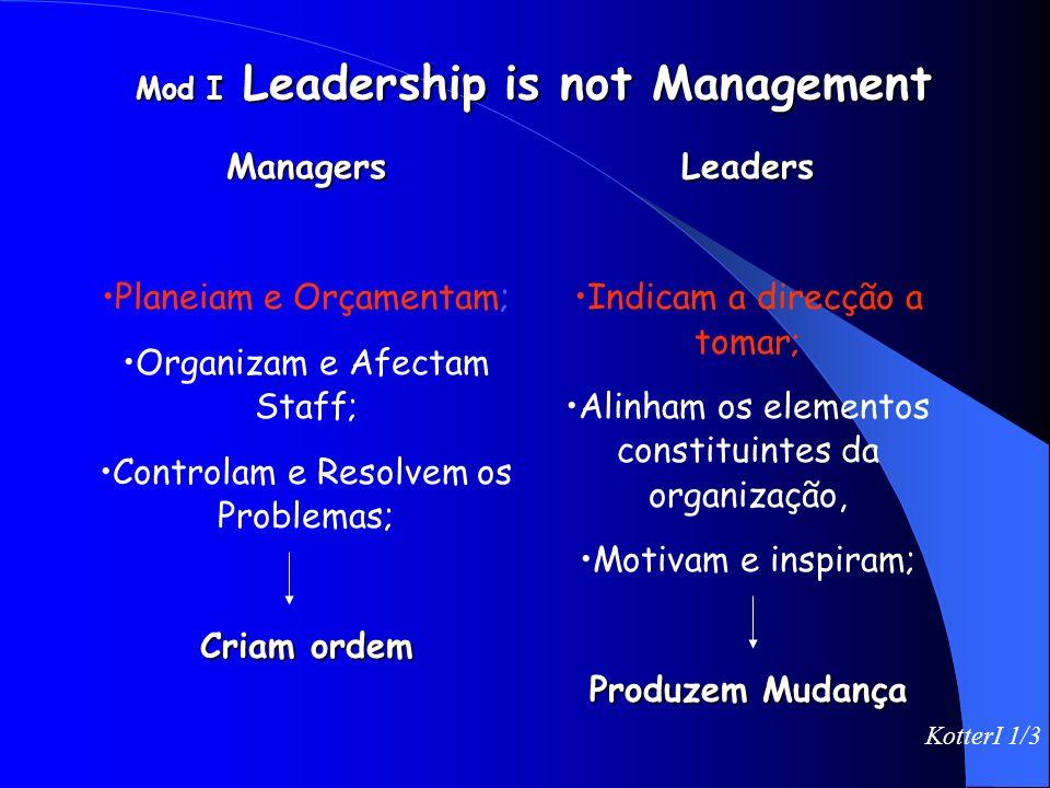 Como dividiria percentualmente os dirigentes desta organização pelos 4 quadrantes? Porque é que a maioria está onde está? O que é que obstaculiza o se