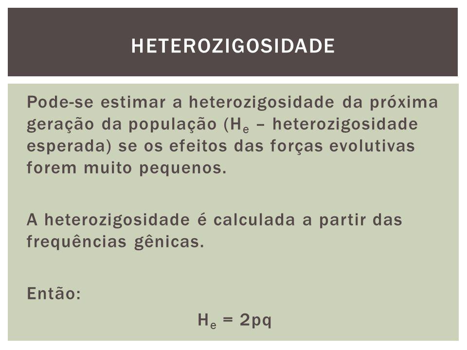 Pode-se estimar a heterozigosidade da próxima geração da população (H e – heterozigosidade esperada) se os efeitos das forças evolutivas forem muito p