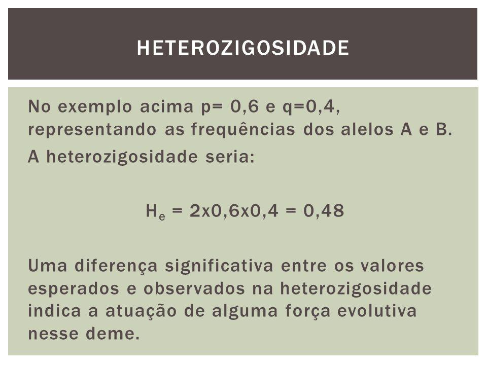 No exemplo acima p= 0,6 e q=0,4, representando as frequências dos alelos A e B. A heterozigosidade seria: H e = 2x0,6x0,4 = 0,48 Uma diferença signifi