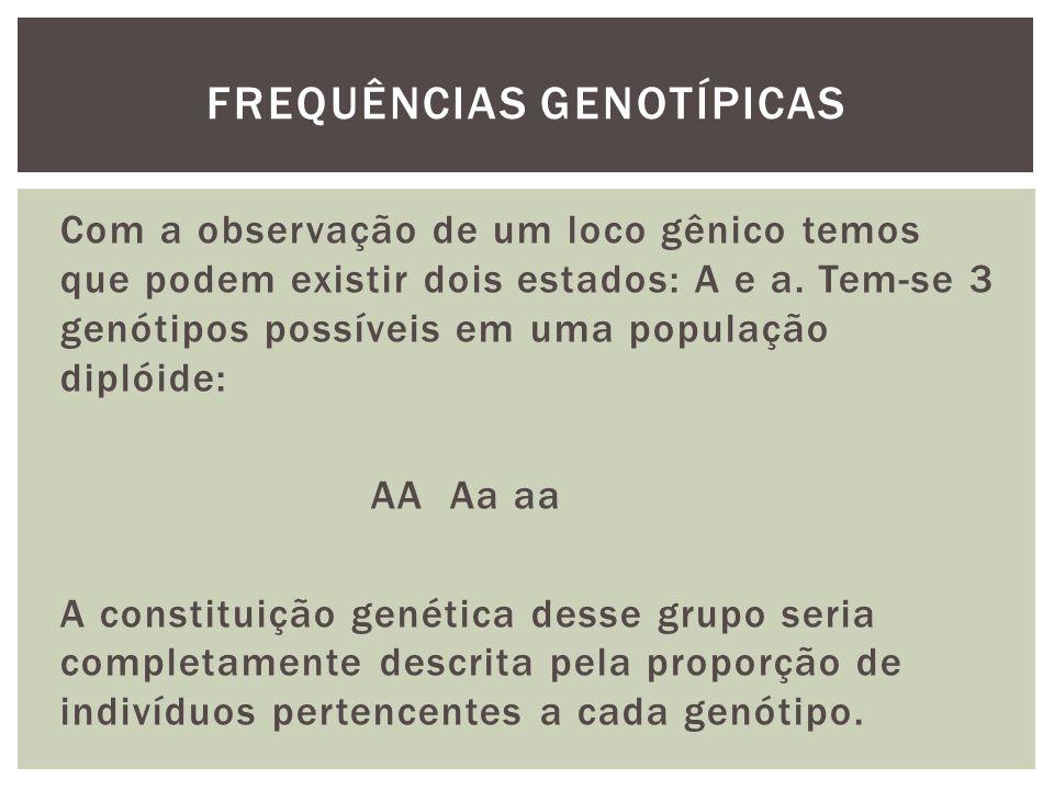 Com a observação de um loco gênico temos que podem existir dois estados: A e a. Tem-se 3 genótipos possíveis em uma população diplóide: AA Aa aa A con