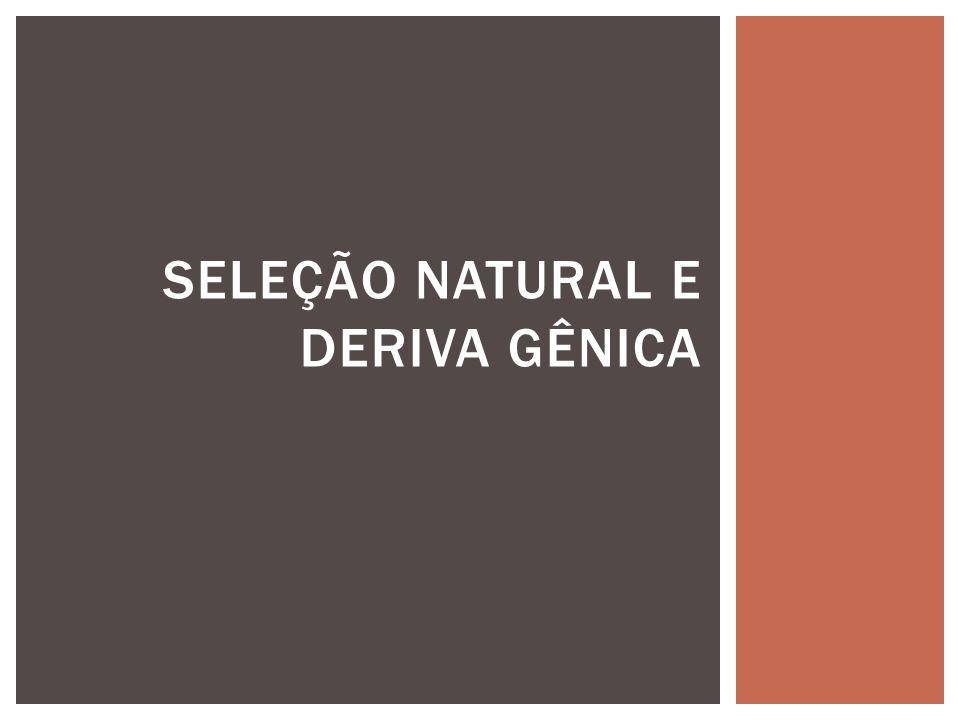 SELEÇÃO NATURAL E DERIVA GÊNICA