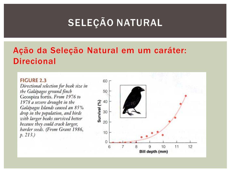 Ação da Seleção Natural em um caráter: Direcional SELEÇÃO NATURAL