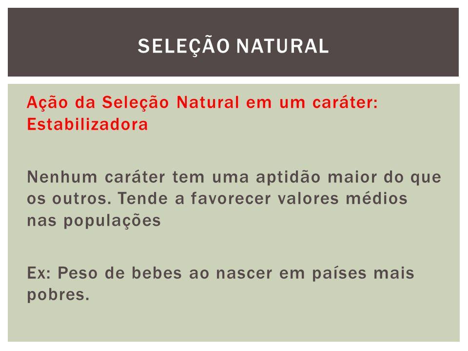 Ação da Seleção Natural em um caráter: Estabilizadora Nenhum caráter tem uma aptidão maior do que os outros. Tende a favorecer valores médios nas popu