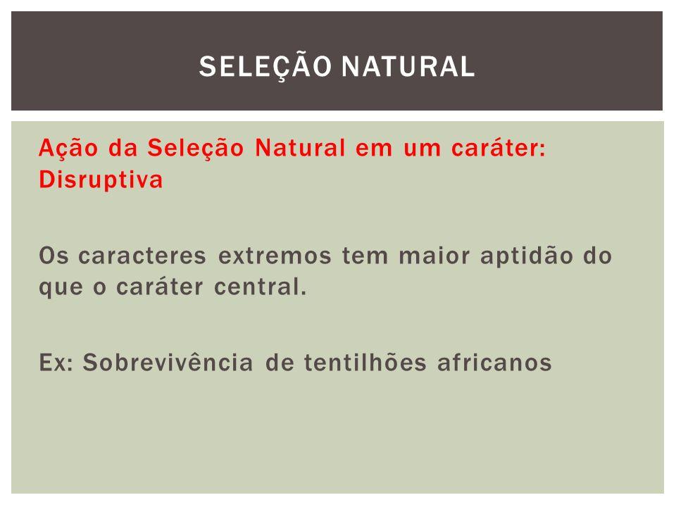 Ação da Seleção Natural em um caráter: Disruptiva Os caracteres extremos tem maior aptidão do que o caráter central. Ex: Sobrevivência de tentilhões a
