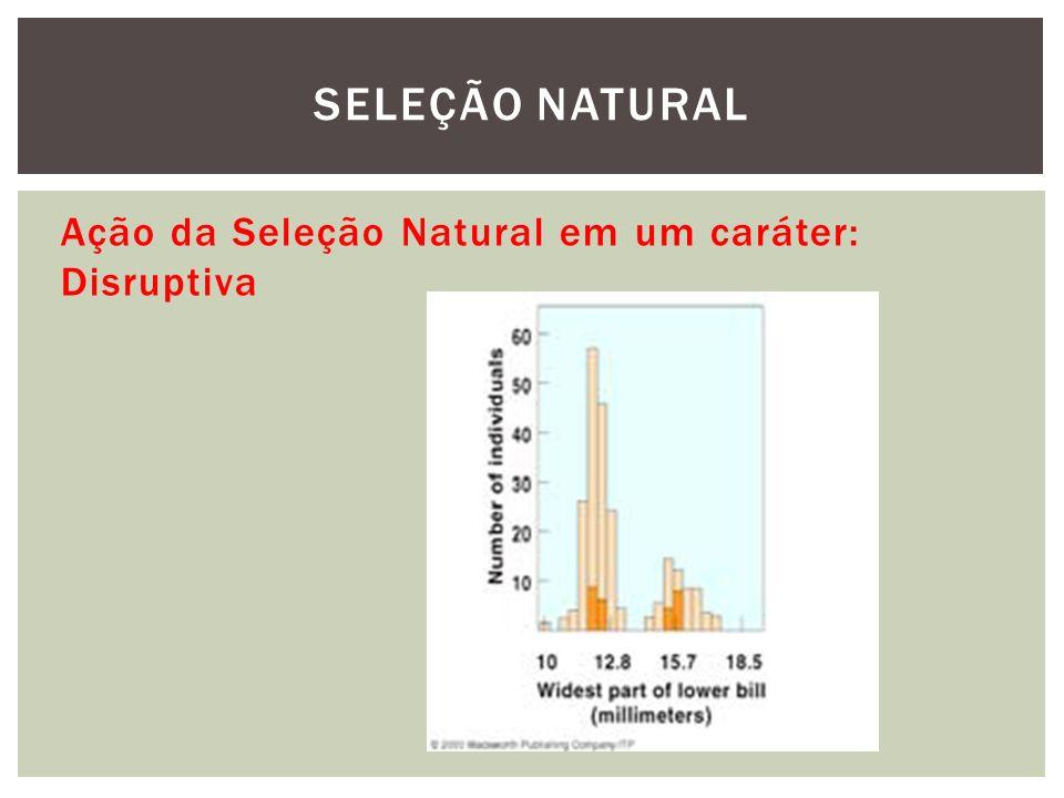 Ação da Seleção Natural em um caráter: Disruptiva SELEÇÃO NATURAL