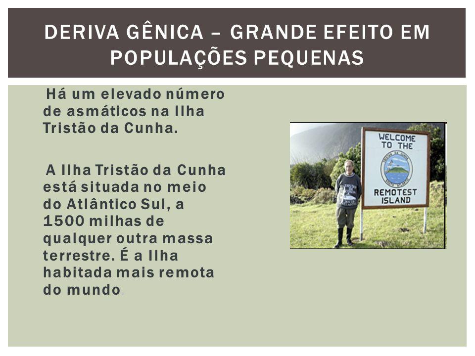 DERIVA GÊNICA – GRANDE EFEITO EM POPULAÇÕES PEQUENAS Há um elevado número de asmáticos na Ilha Tristão da Cunha. A Ilha Tristão da Cunha está situada