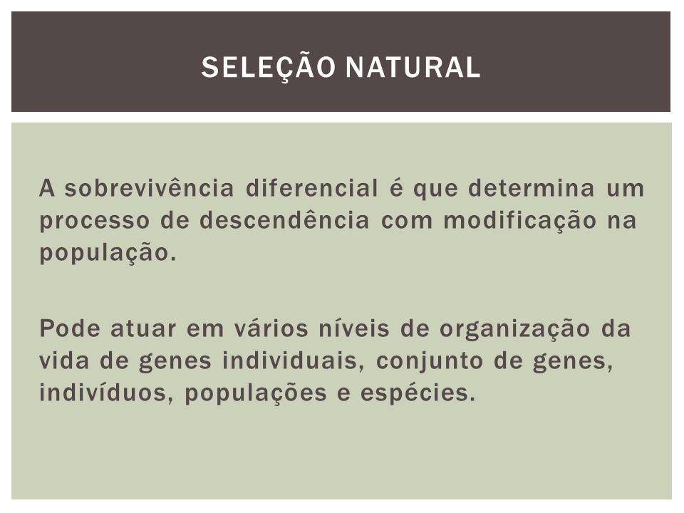 A sobrevivência diferencial é que determina um processo de descendência com modificação na população. Pode atuar em vários níveis de organização da vi